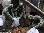 地震中死鸭近万 防化团官兵进行防疫